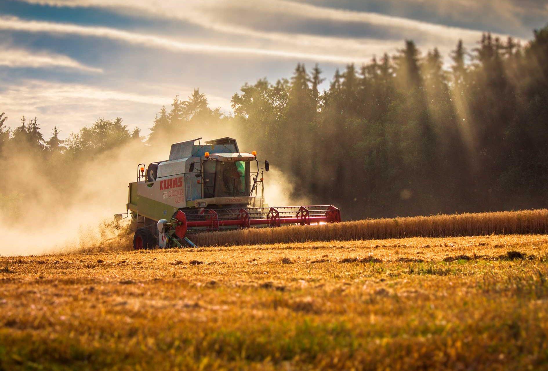Termografering i Landbrug i Hjørring Nordjylland